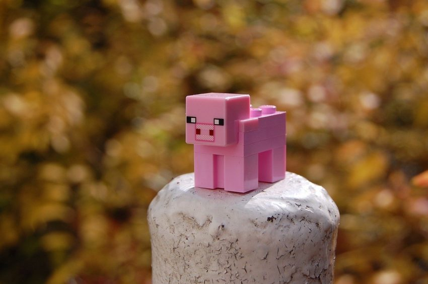 Minecraft Pig Bricks Toy Piggy  - mitjaC / Pixabay